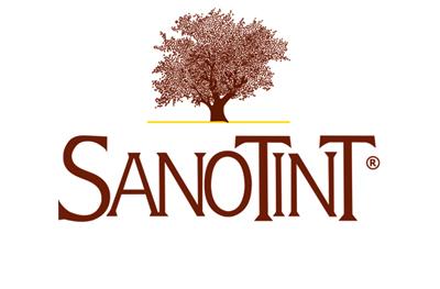 logo pion S 2 - MOJA PRZYGODA Z FARBAMI SANOTINT